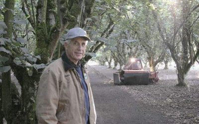 Oregon hazelnut growers face small crop, lower prices