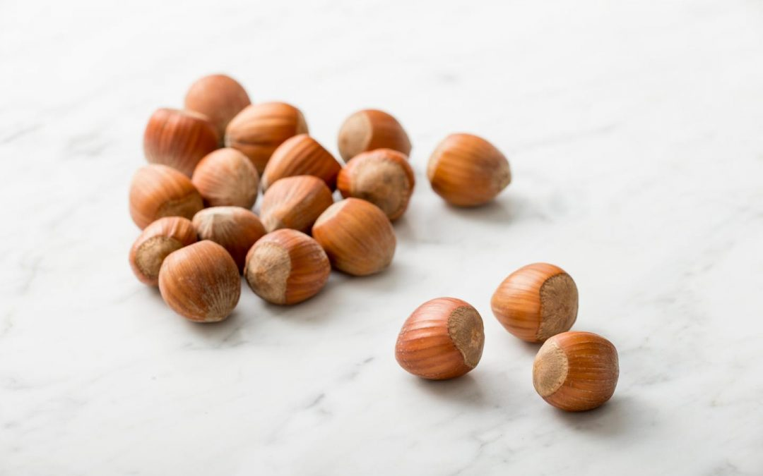 Hazelnuts 365: Why Oregon's State Nut May Be the Key to Disease Prevention