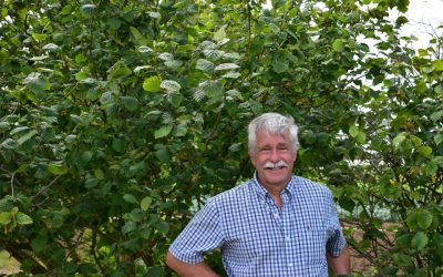 Oregon State Scientist Sees Future in Homegrown Hazelnuts