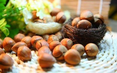 Hazelnuts Health Benefits: Why Hazelnuts are Good for Health and Skin