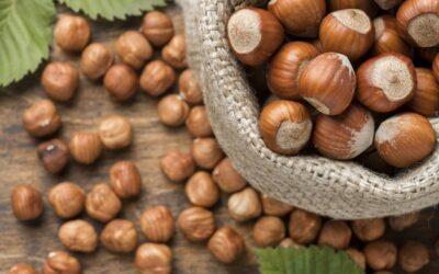 Western Innovator: Couple takes on sweet side of hazelnuts