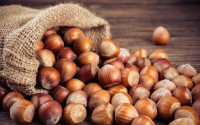 Hazelnut Marketing Board Projects Record Crop in Oregon